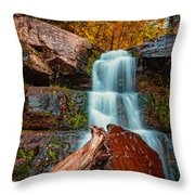 Lower Falls At Kaaterskill Throw Pillow