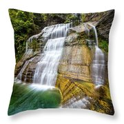 Lower Falls Profile At Enfield Glen Throw Pillow
