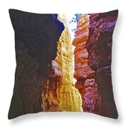 Lower Level Of Wall Street On Navajo Trail In Bryce Canyon National Park, Utah Throw Pillow