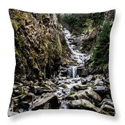 Lower Reid Falls Throw Pillow