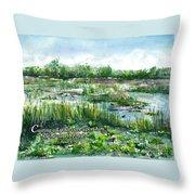 Loxahatchee Marsh 1 Peter 5 Throw Pillow