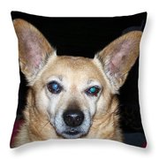 Loyalty Throw Pillow