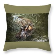 Lu The Homosassa Hippo Throw Pillow
