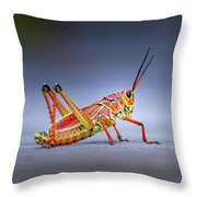 Lubber Grasshopper Throw Pillow