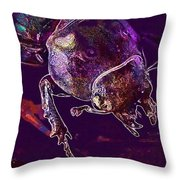 Lucane Kite Female Darling Beetle  Throw Pillow