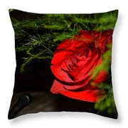 Lucius Red Rose Throw Pillow