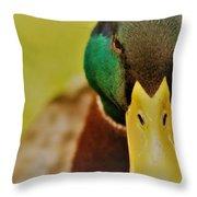 Lucky Ducky Throw Pillow