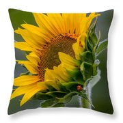 Lucky Lady Throw Pillow