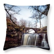 Lumb Falls Panoramic Throw Pillow