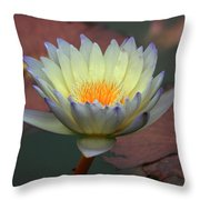 Luminescent Violet Throw Pillow