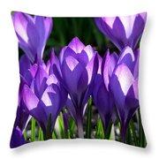 Luminous Floral Geometry Throw Pillow