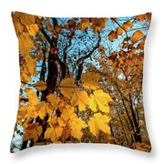 Luminous Leaves Throw Pillow