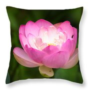 Luminous Lotus Blossom Throw Pillow