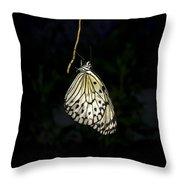 Luminous Paper Kite At Rest Throw Pillow