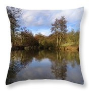 Lumsdale Pool Throw Pillow