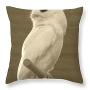 Luna The Rescued White Leucistic Eastern Screech Owl In Sepia Throw Pillow