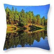 Lunar Reflections Throw Pillow