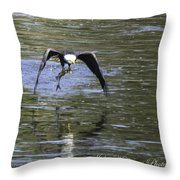 Lunch On The Fly Throw Pillow by John Holloway