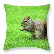 Lunchtime In The Park Throw Pillow