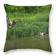 Lunchtime On The River Throw Pillow