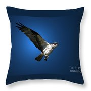 Lunchtime Treat Throw Pillow