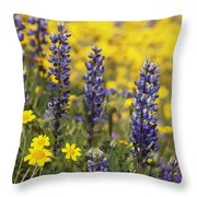 Lupin And Daisies Throw Pillow