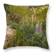 Lupine Among The Weeds  Throw Pillow