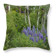 Lupine And Aspens Throw Pillow
