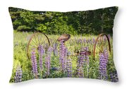 Lupine Festival - Sugar Hill New Hampshire Usa Throw Pillow