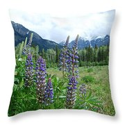 Lupine In The Alpine Throw Pillow