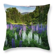 Lupine In The Valley Throw Pillow