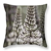 Lupine Muted Throw Pillow