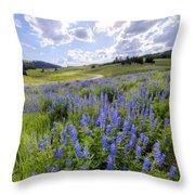 Lupine Pass Throw Pillow
