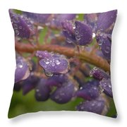 Lupine With Raindrops Throw Pillow