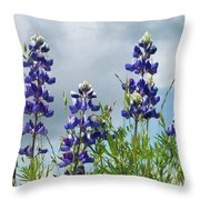 Lupines Against The Sky Throw Pillow