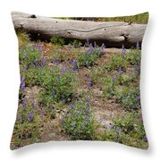 Lupines And A Log Throw Pillow