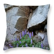 Lupines And Rock Face Throw Pillow
