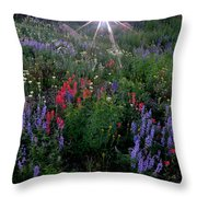 Lupines And Sun Throw Pillow