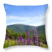Lupines And The Presidentials Throw Pillow