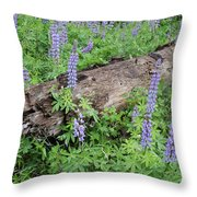 Lupines And Windfall Throw Pillow