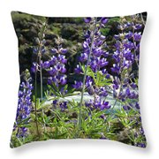 Lupines At The River Throw Pillow
