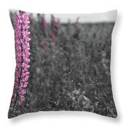 Lupins 2016 27a Throw Pillow