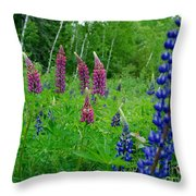 Lupins 2016 4 Throw Pillow