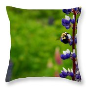 Lupins 2016 7 Throw Pillow