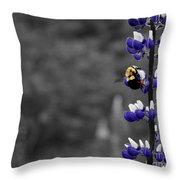 Lupins 2016 7a Throw Pillow