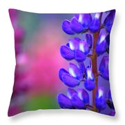 Lupins 36 Throw Pillow