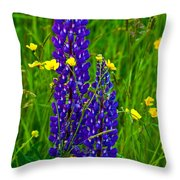 Lupins And Buttercups Throw Pillow