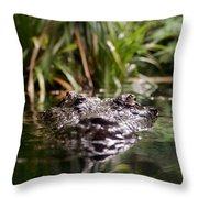 Lurking Crocodile Throw Pillow
