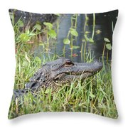 Lurking In The Grass Throw Pillow
