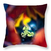 Luscious Kaleidoscope Throw Pillow